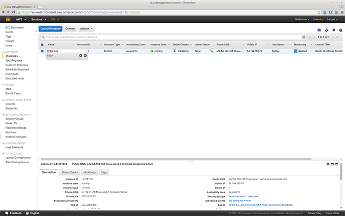 Amazon's dashboard tells you the status of your VM. You can also edit the VM name. A green dot indicates it's running